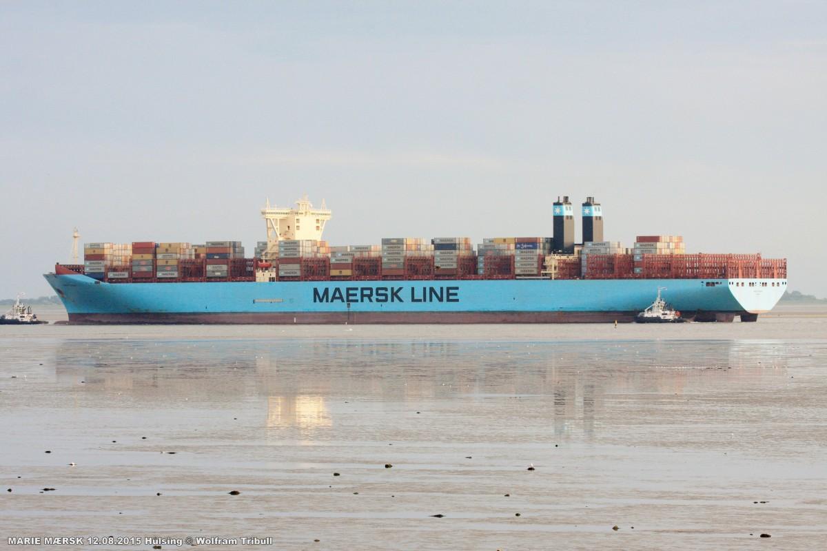 MARIE MÆRSK am 12.08.2015 bei Bremerhaven Höhe Hülsing
